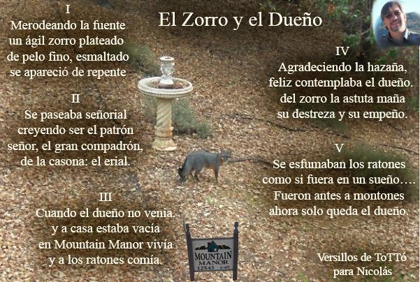 El-Zorro-y-el-Dueño