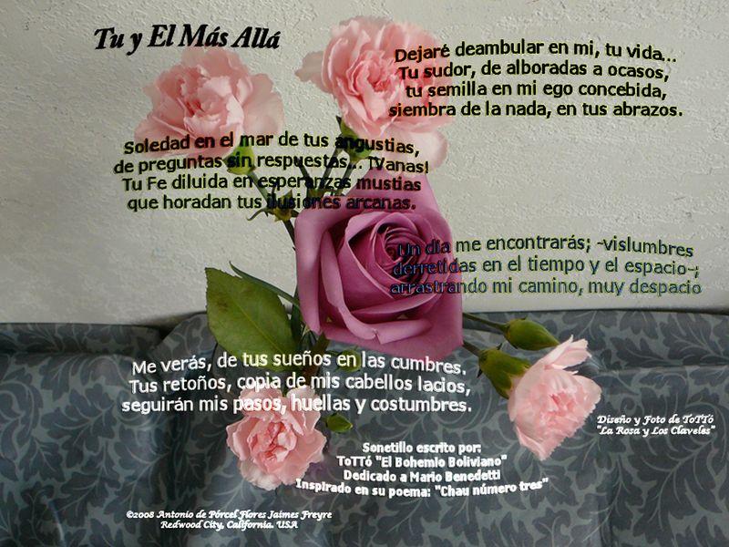Poema-de-TT-v2