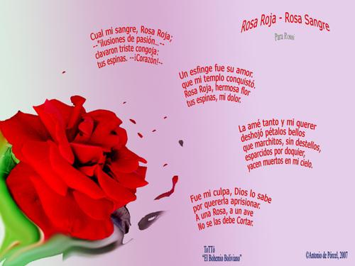 poemas de flores
